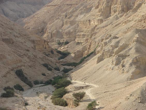 В Израиле открыт первый арабский кибуц
