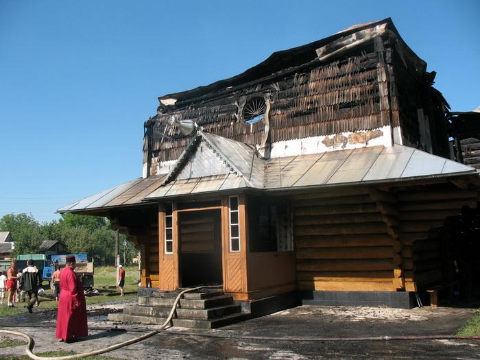 За 18 років в Україні знищено 150 дерев