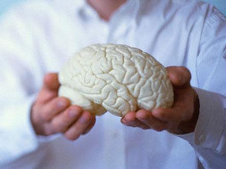Мозг верующего получает дополнительные функции