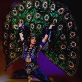АНОНС: концерт индийской музыки и танца «Искусство, данное богами» (Киев, 18 сентября)