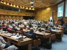 На Світовому тижні міжрелігійної гармонії порушили ситуацію в Україні
