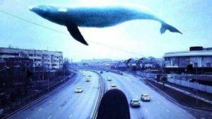 """Тернопільський священик підключився до гри """"Синій кит"""""""