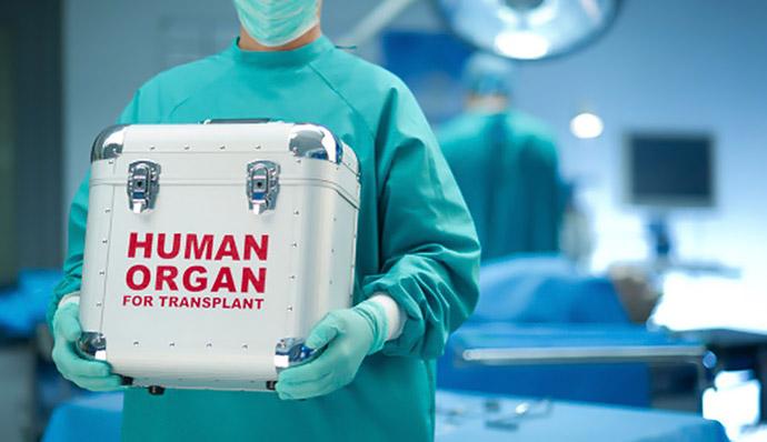 Парламент врахував позицію Ради Церков у законі про трансплантацію донорських органів