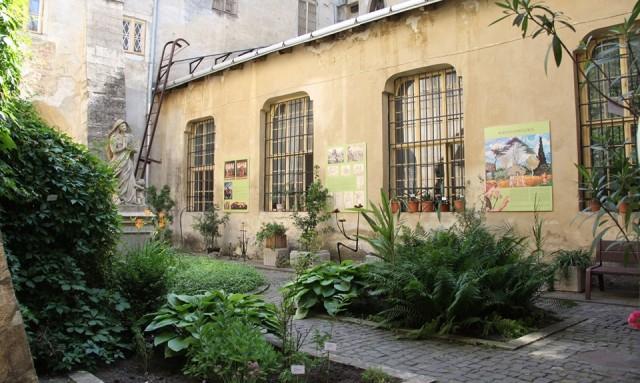 У Львові відкрили виставку живих біблійних рослин