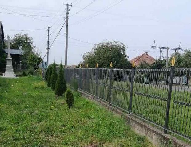 На Ужгородщині з території церкви викрали 12 деревцят туї — зловмисників знайшли