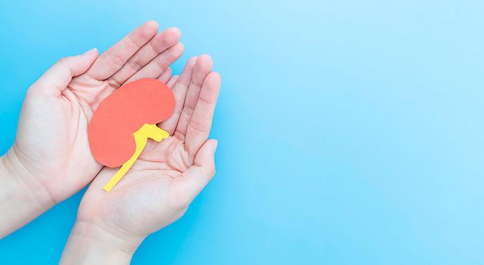 Рада Церков і МОЗ налагоджують взаємодію у питаннях трансплантації та донорства